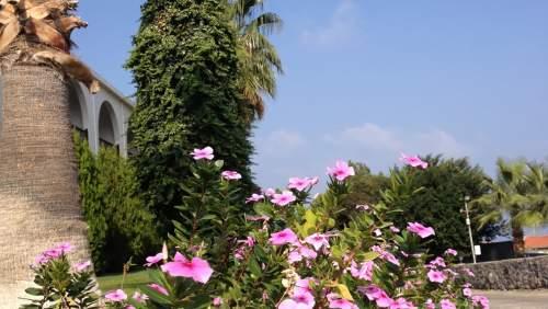 Onar Village Hotel Gardens 2