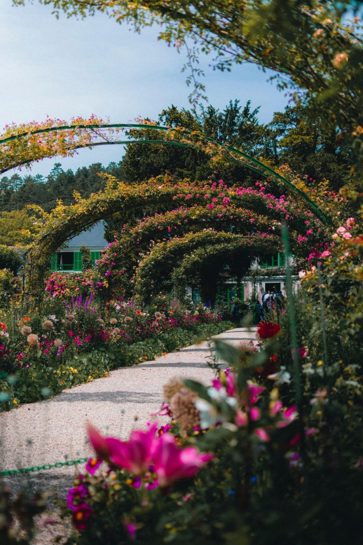 Monets-Garden_gautier-salles-715115-unsplash