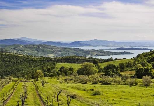 Umbria-landscape-with-Lake-Trasimeno_shutterstock_193368827_patronestaff