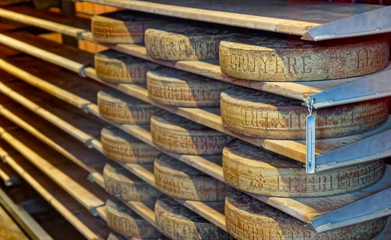 Aging-cheese-in-a-cellar-of-the-Maison-du-Gruyere-cheese-factory-in-Switzerland