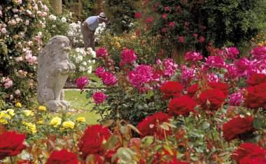 14-Hever-Castle-Rose-Garden-landscape