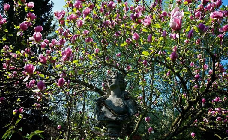 Great-Comp-Garden-1- Visit Kent