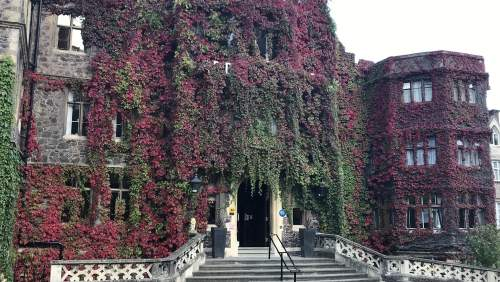 Abbey Hotel image00014