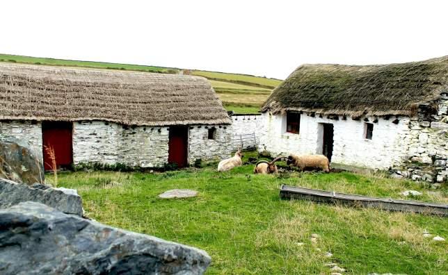 IMG 2783 Cregneash Village