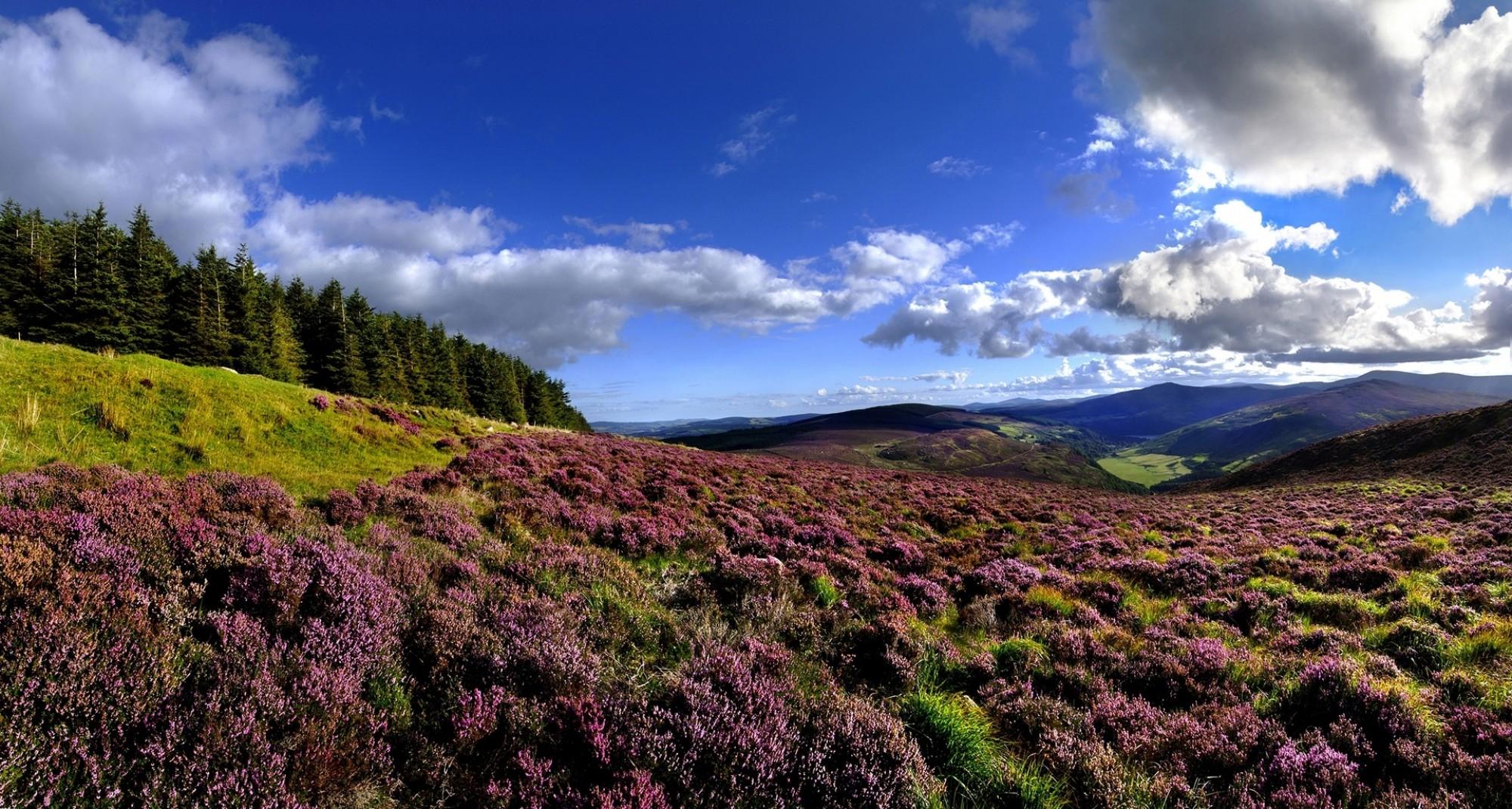Wicklow Hills Wicklow Tourism Ireland Chris Hill
