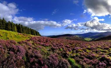 Wicklow Hills Wicklow Tourism Ireland Chris Hill